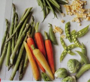 My Garden Veggie